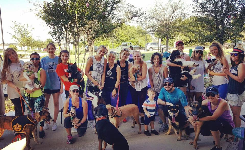 UV Events: Dog Jog 5K